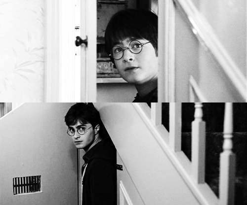 The-Cupboard-under-the-Stairs-harry-potter-31483765-500-416